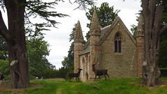 Scone Palace (lizsmith) Tags: lochsandglens lochtummel sconepalace