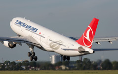 A330 | TC-JIS | AMS | 20190709 (Wally.H) Tags: airbus a330 tcjis turkishairlines thy türkhavayollari ams eham amsterdam schiphol airport