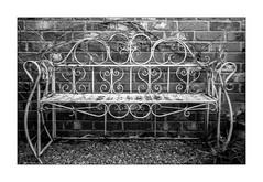 Garden seat (Roscullion) Tags: leicaiiif summitarf2 rodinalstand kentmere400