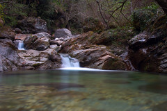 Torrente nel bosco (Darea62) Tags: creek stream river forest stones wood nature outside torrente seravezza versilia azzano malbacco montealtissimo alpiapuane rocks waterfall