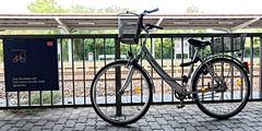 Das Abstellen von Fahrrädern ist hier nicht gestattet (Pascal Volk) Tags: brandenburg werderhavel potsdammittelmark bahnhof werder station estación fahrrad bicicleta bicycle bike wideangle weitwinkel granangular superwideangle superweitwinkel ultrawideangle ultraweitwinkel ww wa sww swa uww uwa sommer summer verano canoneosr canonef1635mmf4lisusm 28mm dxophotolab