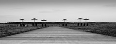 Way (Carlos Lacano) Tags: way bw black white landscape carlos lacano germany canon eos m 32mm