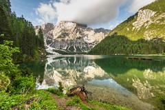 "am Pragser Wildsee mit dem ""Vulkan"" Seekofel (jürgenmilnik) Tags: italien italia dolomiten dolomiti pragserwildsee lago landschaft landscape berge nikon nikond7200"