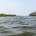 Zwemmen in het haventje van NPZ