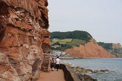 Coastal Walk (lazy south's travels) Tags: sidmouth devon england neglish britain british uk path pathway coast coastal red cliffs town seaside