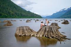 O (luke.me.up) Tags: nikon z6 nikonz6 nikonmirrorless longexposure water lake stumps