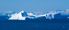 Shades of blue (little_frank) Tags: diskobay greenland blue panorama nature wild wilderness skyline azure iceberg surface ice summer sea ocean spectacular wonderful naturalwonder grønland kalaallitnunaat floating sailing cruise diskobugten qeqertarsuuptunua exploring unesco baffinbay 그린란드 гренландия light shadow グリーンランド groenland groenlandia grönland wonder beauty fabulous fantastic september sunnyweather cruising horizon imposing imponence majestic wondrous wanderlust float icy cold north arctic shade forochel middleearth world waterscape scenery view dream dreamland paradise heaven eisberg 冰山 빙산 айсберг exploration travel amazing admiring peace peaceful
