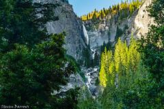 No Hiding For Illilouette Fall, Yosemite National Park (Steven Barrows) Tags: illilouettefall illilouettefallyosemite illilouettefallmisttrail misttrail misttrailyosemite yosemitenationalpark waterfall nationalpark yosemitewaterfall usnationalpark hiking