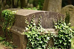 Highgate June 19 - 26 (Lostash) Tags: graves tombs gravestones tombstones burials death cemetary highgatecemetary london graveyards uk
