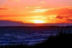Abendrot (sveweg) Tags: sonnenuntergang sonne romantik urlaub holidays dänemark natur meer