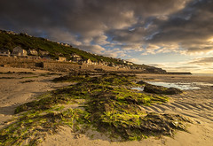 Dusk at Sennen Cove (Tracey Whitefoot) Tags: 2019 tracey whitefoot cornwall summer july south west coast coastal sennen cove lands end beach low tide dusk evening seaweed sand village