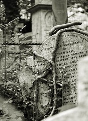 Highgate June 19 - 17 (Lostash) Tags: graves tombs gravestones tombstones burials death cemetary highgatecemetary london graveyards uk