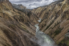 Grand Canyon of Yellowstone - Yellowstone National Park 7I4A3638 (raddox) Tags: yellowstone nationalpark wyoming grandcanyon yellowstoneriver river canyon