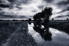 Canal reflections 1 (toniertl) Tags: somerton somertondeeplock cherwellvalley clouds dark footpath grass himmel moody northoxfordshirecanal skyscape threatening toniphotoxoncouk towpath track trees waterreflection waterweed landscape monochrome blackandwhite bw atmosphere