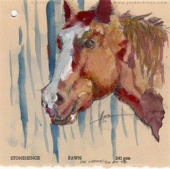 Sox at 98 - 05171901 (SweetBippie) Tags: interpretive emotional expressive gouache light moody ephemeral indefinable sketch alaprima yellow sienna marsblack paper sunlight warmth encompassingthickandthin watercolor personality horse animal friend neighbor buddy equestrian equine pony portrait