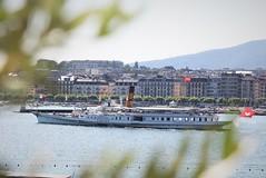 Steamer Simplon leaving Geneva (roomman) Tags: 2019 switzerland geneva transport transportation hip vessel lake simplon leaving depart departure water leman lac genfersee genfer see