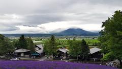 Furano mountains (blondinrikard) Tags: