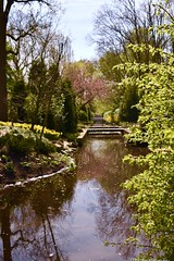 Solitude (phthaloblu) Tags: keukenhofgardens netherlands canal flowers trees water sky