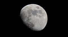 (bluebird87) Tags: nikon d7100 moon meade lx70 telescope