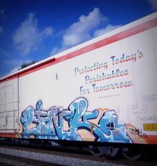 link (timetomakethepasta) Tags: link sfb freight train graffiti art cryo cryotrans cryx reefer