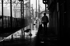 I also like a rainy day (明遊快) Tags: monochrome street rain alley refrection fence wet japan walk pedestrian candid bw 中津 lines road