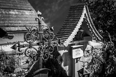 Graveyard (BisonAlex) Tags: europe 歐洲 sony a73 a7iii a7m3 a7 taiwan 台灣 外拍 旅拍 travel 街拍 street streetphoto streetshot hallstatt austria 哈修塔特 奧地利