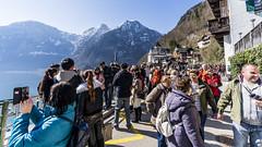 Tourists (BisonAlex) Tags: europe 歐洲 sony a73 a7iii a7m3 a7 taiwan 台灣 外拍 旅拍 travel 街拍 street streetphoto streetshot hallstatt austria 哈修塔特 奧地利
