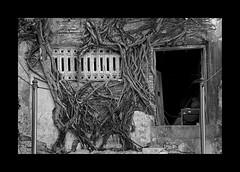 Heritage at risk (Antoine - Bkk) Tags: exploration bangkok thailand heritage street building architecture ancient black white