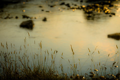 Slowly, sunrise. (tonguedevil) Tags: landscape outdoor outside countryside summer nature river water reflections ripples morning sunrise light shadows sunlight colour fuji