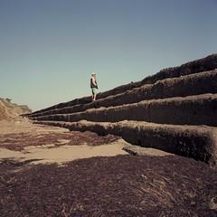 Seawall steps (ADMurr) Tags: california beach step erosion rolleiflex 35 e zeiss planar dbb059