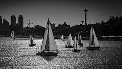 Boats at South lake union !! (pankaj.anand) Tags: boats seattle water outdoor bw blackandwhite sony sonya7iii space spaceneedle boat yacht building lake lakeunion washington washingtonlake lakes summer