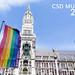Für den CSD München 2019 werden Regenbogenfahnen vor dem Neuen Rathaus gehisst