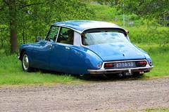 1974 Citroën DS (Dirk A.) Tags: 87ya50 sidecode3 importkenteken 1974 citroën ds