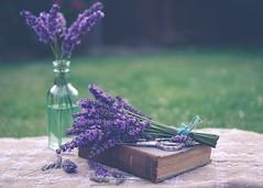 Vintage (tanyalinskey) Tags: outdoor stilllife lavender flowers picofpaper book smileonsaturday