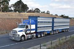 Prendergast Livestock - Mack Superliner (Scottyb28) Tags: truck trucks trucking highway haulage diesel loaded interstate