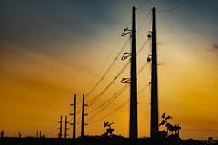 Rilland (Omroep Zeeland) Tags: hoogspanningstracé 380 kv tennet rilland zonsondergang