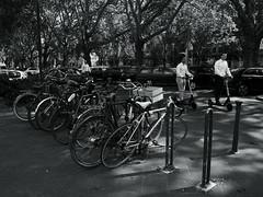 summer high noon@Kö-Graben, Düsseldorf (Amselchen) Tags: city street streetphotography streetsnap people pedestrians bnw blackandwhite light shadow mono monochrome panasonic germany citylife urban season summer lmonochromed bicycles panasonicdcgx9 lumixgvario1232f3556