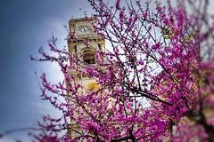 Agios Minas, the  cathedral church in Heraklion, Crete. (nikos_frantzeskakis) Tags: church orthodoxchurch colorful greece crete