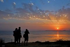 Compañeros de 'oficio' (ZAP.M) Tags: puestadesol atardecer puntacantera sanfernando cádiz andalucía españa paisaje naturaleza mar cielo nubes zapm mpazdelcerro nikon nikond5300 flckr