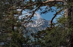 first view (markus364) Tags: berg mountain alpen alps tirol tyrol austria österreich outside uotdoor natur landschaft landscape
