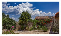 The Old Schoolhouse Garden, Fauzan, Cesseras, France. (Richard Murrin Art) Tags: theoldschoolhousegarden fauzan cesseras france flower cloud sky richard murrin art