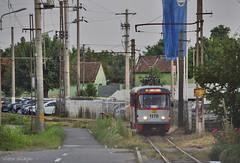 1170 - 6 - 09.07.2019 (2) (VictorSZi) Tags: romania arad transport tram tramvai nikon nikond5300 publictransport summer vara july iulie