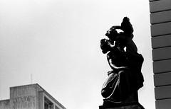 #2410 - angel (vintequatro10) Tags: streetphography streetphotographer arquitetura architecture theatromunicipal sãopaulo só rua fotografiaderua kentmere400 pentaxkm filmnotdead queimandoofilme analogic analogica