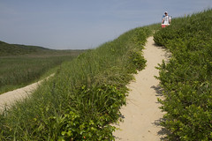 Up and Oer the Dune (brucetopher) Tags: beach nationalpark dune dunes wilderness wildlife park land landscape sand beachgrass holiday vacation 4thofjuly fourthofjuly independence sea ocean atlantic path travel sightseeing hike overlook green grass eelgrass nature