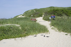New White Shark Warning (brucetopher) Tags: beach nationalpark dune dunes wilderness wildlife park land landscape sand beachgrass holiday vacation 4thofjuly fourthofjuly independence sea ocean atlantic path travel sightseeing hike overlook green grass eelgrass nature