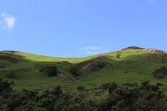 Sun and shade on hillside (Joshua Gaskell) Tags: thelakes lakedistrict lakeland cumbria bluesky sunshine sun hillside