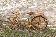 Vintage Bike MG_0036 (3Bs7Gs) Tags: bicycle vintage vintagebicycle rust rustyandcrusty abandonment