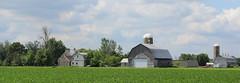 Ruralscape in St Mathieu de Beloeil, Qc (pegase1972) Tags: ruralscape quebec canada qc stmathieudebeloeil farm grange étable barn ferme montérégie monteregie québec summer