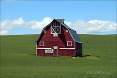 Palouse Region (DJFan) Tags: palouseregion washington farmland patriotic barn