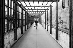 Straight (CoolMcFlash) Tags: corridor person candid street streetphotography fujifilm xt2 vienna bw blackandwhite bnw symmetry man durchgang wien sw schwarzweis symmetrie mann fotografie photography xf1024mmf4 r ois geometry geometrie